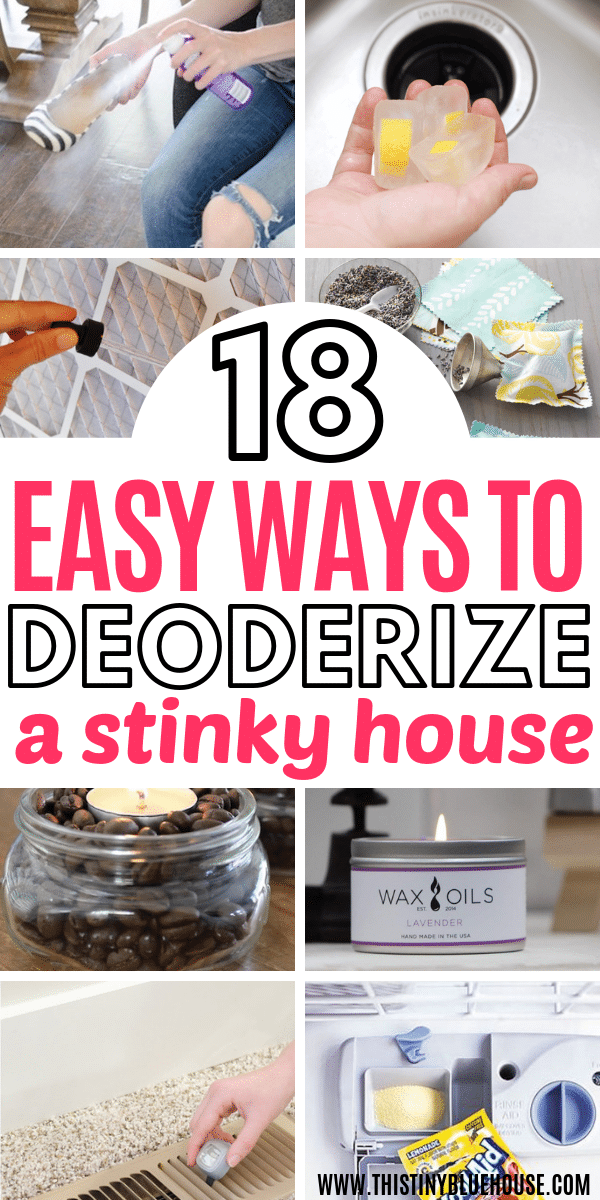 Are trying to get the stink out of your house? Here are 18 genius affordable ways to make your house smell amazing with very little effort. Banish smells for good with these easy ways to make your house smell amazing. These BEST ways to make your house smell amazing are both easy and effective so get your house smelling great today! #smellhacks #smellhacksforhome #smellhacksDIY #smellhackshouse #howtogetridofbadsmells #howtomakeyourhousesmellgood #howtomakeyourhousesmellamazing