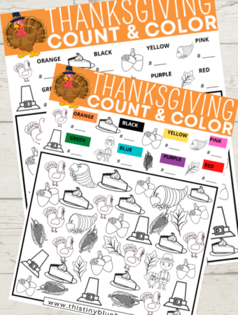 Free Printable Thanksgiving I Spy Activity For Kids