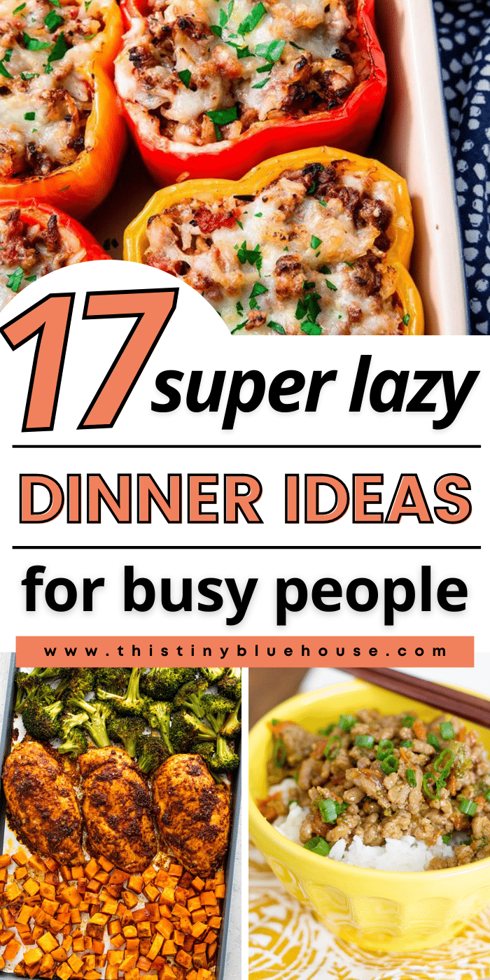17 Delicious Lazy Dinner Ideas