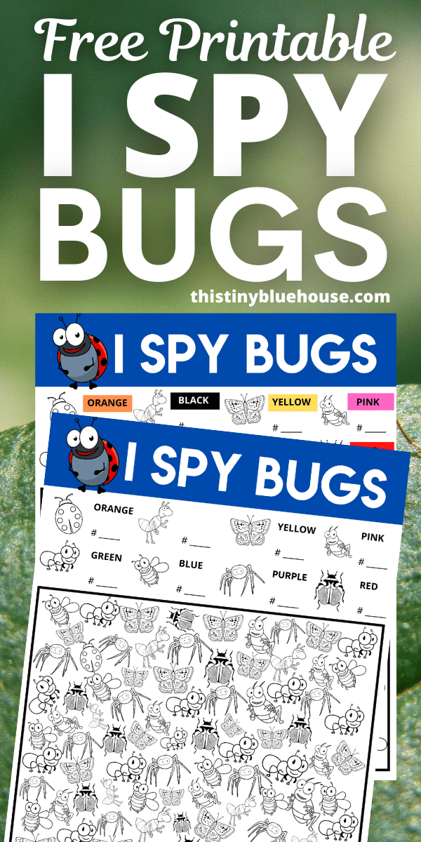 I Spy Bugs {Free Printable Game For Kids}